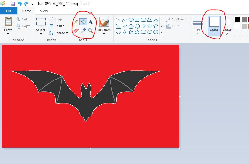 trasnsparent background paint bat fill icon