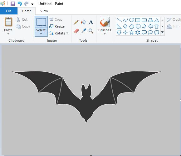 transparent background paint bat grey