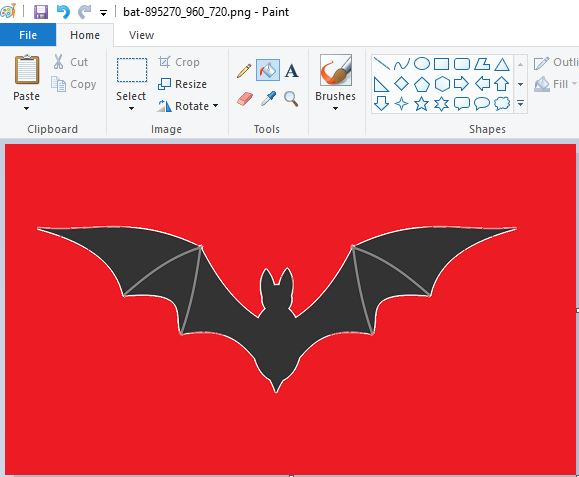 transparent background bat on red