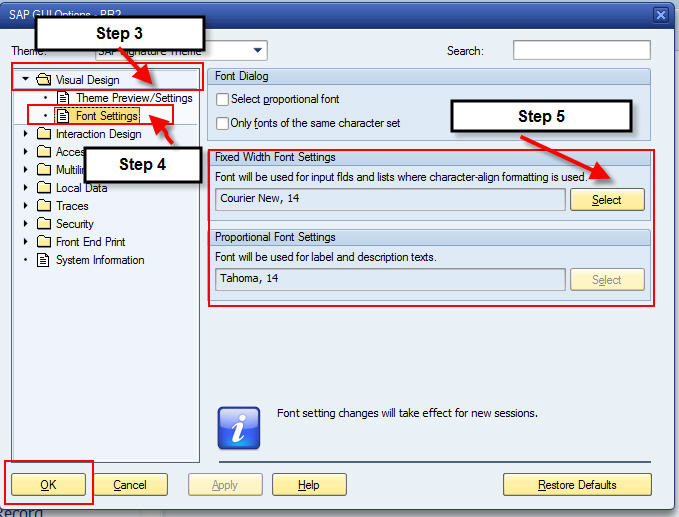 how to increase font size in sap more instructions